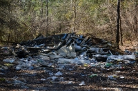 2016 Forest Clean Up_15