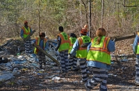2016 Forest Clean Up_21