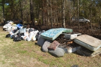 2020 Forest Cleanup_8