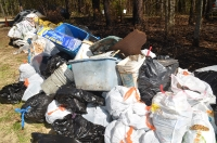 2020 Forest Cleanup_9